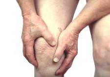 knee-arthritis-horse-NM-Santa-Fe-19502[1]